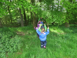 Arms up through the nettles!