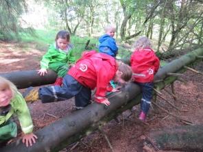 Great climbing and balancing