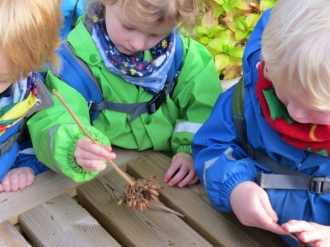 Looking at seed heads